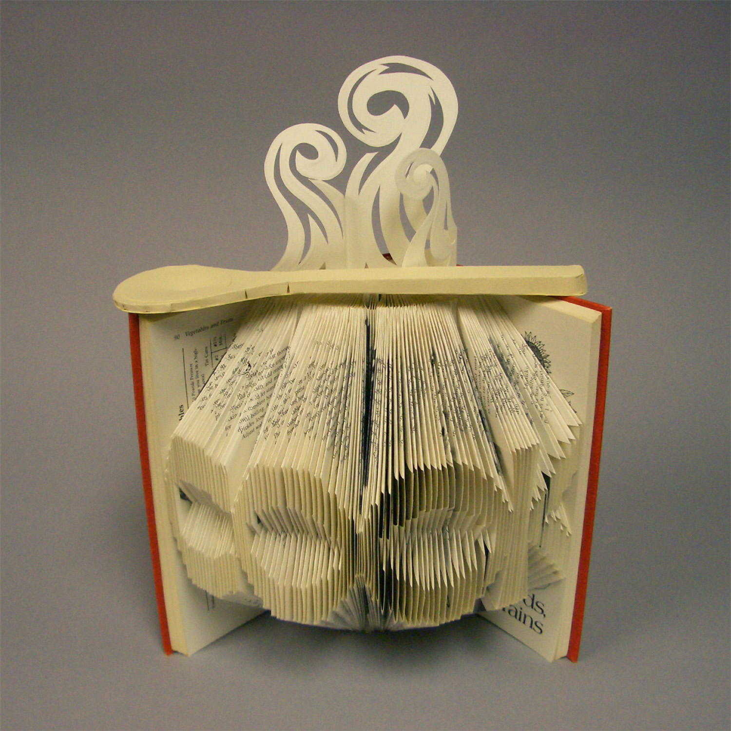 altered book with the word cook folded into it
