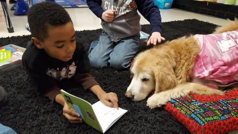 little boy reading to a dog
