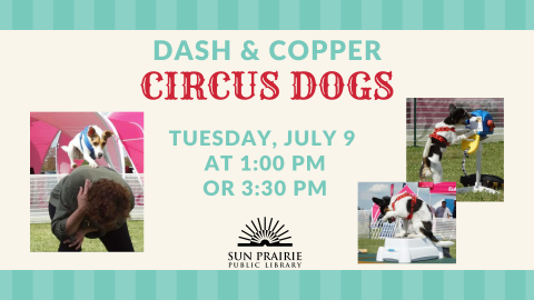 Circus Dogs, Dash & Copper with time and date of event